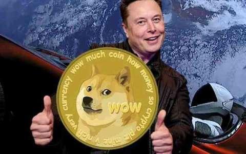Le cours du Dogecoin n'a pas trop bougé: Musk a raté son coup !