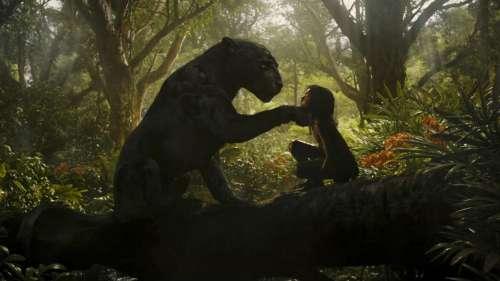 Critique «Mowgli» (Netflix) : l'adaptation réussie loin des clichés Disney