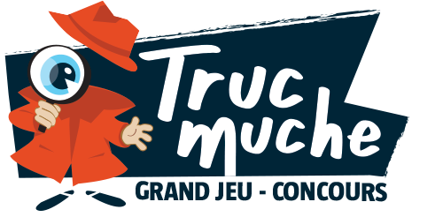 Solutions questions subsidiaires Trucmuche 2020