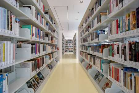 À la bibliothèque, conservatrices et conservateurs : qui sont-ils?