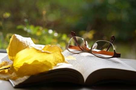 """Bientôt, des rayons """"Livres bio"""" en librairie et bibliothèque ?"""