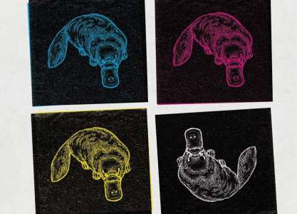 En résidence, Fabrice Erre dessine l'histoire de 6 Pieds sous terre