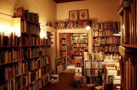 Aux États-Unis, les ventes des librairies ont chuté de 28,3 % en 2020