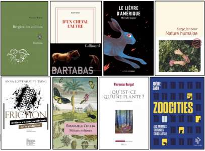 8 livres dans la sélection du Prix littéraire François Sommer 2020