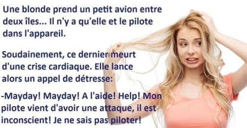 Blagues blondes, une blonde prend un petit avion et le pilote meurt en plein vol