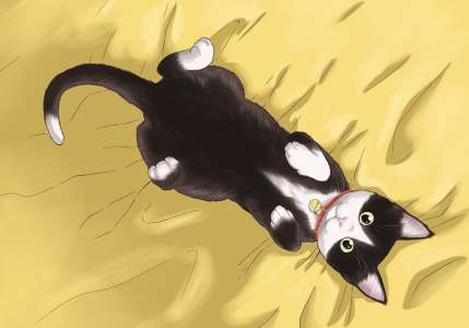Avis Manga Doki-Doki – La Gameuse et son chat (tome 3)