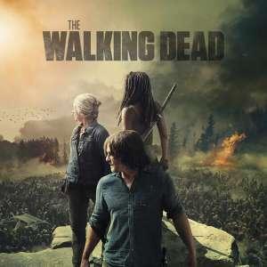 The Walking Dead – Coffret Blu-ray Saison 1 à 10
