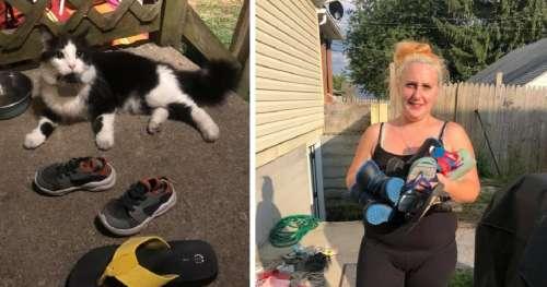 Une femme découvre que son chat rentre à la maison avec des cadeaux – il a volé toutes les chaussures des voisins