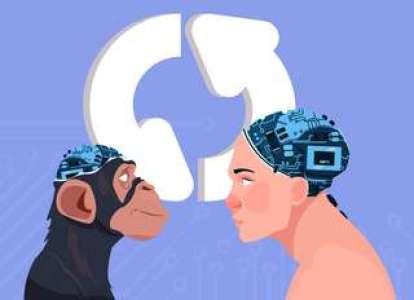 Un gène humain a permis de grossir le cerveau de singes