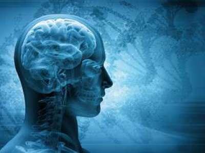 Covid-19 : une hypothèse suggère « une vague silencieuse» de troubles neurologiques liés au coronavirus