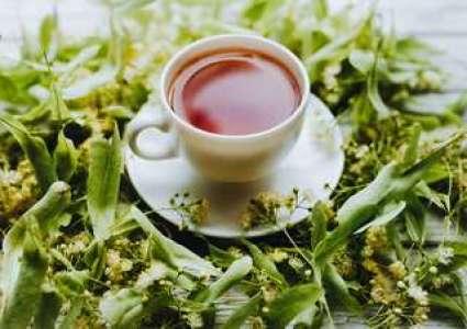 Une molécule du thé vert contre le diabète ?
