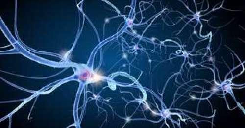 Une première : un neurone artificiel pour soigner des maladies chroniques