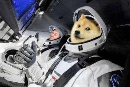 Soutien d'Elon Musk à la révision de la structure des frais de Dogecoin (DOGE)