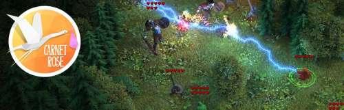 Carnet rose - Druidstone, le RPG tactique par des anciens de Grimrock