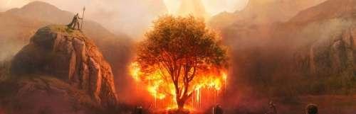 Ashes of Creation Apocalypse, un battle royale en attendant le MMORPG