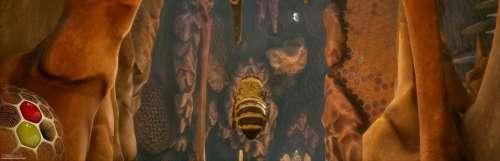 Varsav Game Studios trouve en Bigben un éditeur pour Bee Simulator