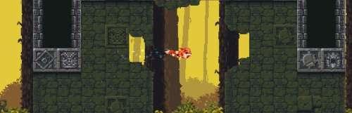 Le renard de Furwind aura droit à une version physique sur consoles
