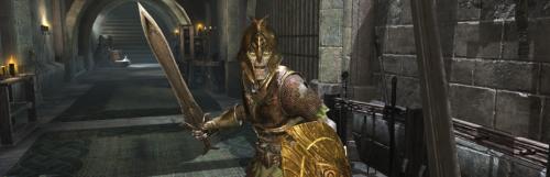 Bethesda reporte la sortie de The Elder Scrolls : Blades sur Switch