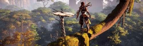 L'exclusivité PS4 Horizon Zero Dawn serait en route pour une sortie PC