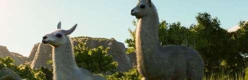 Planet Zoo s'envolera pour l'Amérique du Sud dès le 7 avril