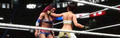 La franchise WWE 2K fera bien une pause cette année