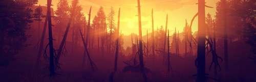Firewatch : le jeu narratif de Campo Santo sera adapté en film