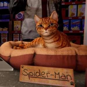 Insomniac ajoute un mode 60 images par seconde avec ray-tracing dans Spider-Man : Miles Morales
