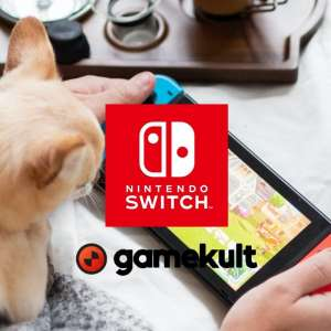 Guide - Guide GK : les accessoires recommandés pour votre Nintendo Switch - Août 2021