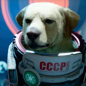 Les Gardiens de la Galaxie présente le chien Cosmo dans une nouvelle bande-annonce