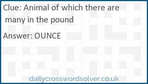 Animal of which there are many in the pound crossword answer