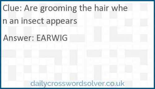 Are grooming the hair when an insect appears crossword answer