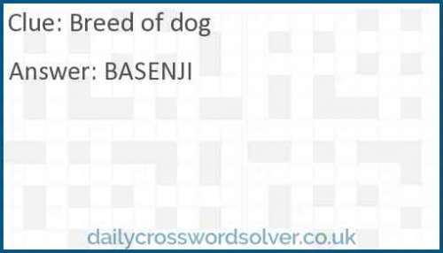 Breed of dog crossword answer
