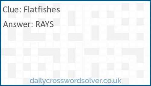 Flatfishes crossword answer