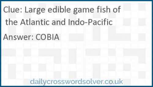 Large edible game fish of the Atlantic and Indo-Pacific crossword answer