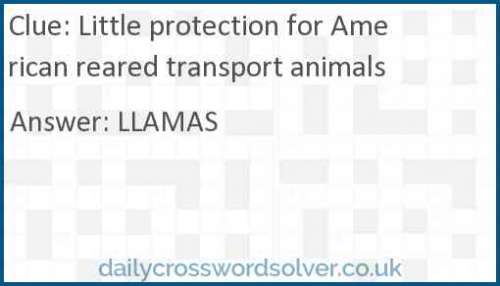 Little protection for American reared transport animals crossword answer