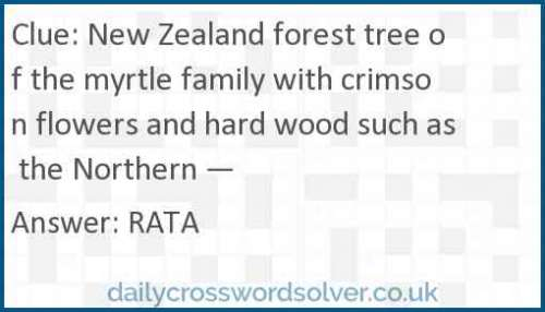 New Zealand forest tree of the myrtle family with crimson flowers and hard wood such as the northern — crossword answer
