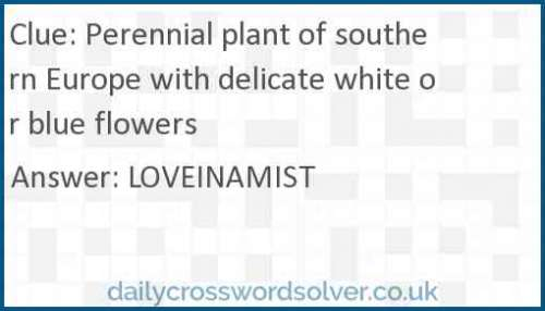 Perennial plant of southern Europe with delicate white or blue flowers crossword answer
