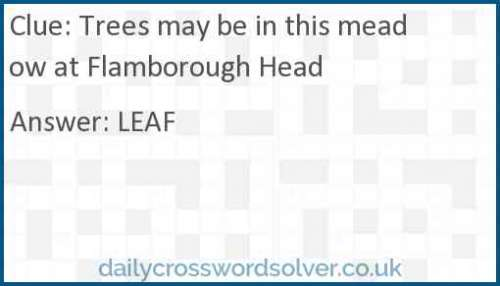Trees may be in this meadow at Flamborough Head crossword answer