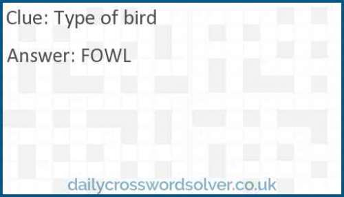 Type of bird crossword answer