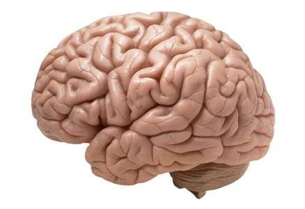 Grâce à cette synapse artificielle, votre ordinateur fonctionnera bientôt comme un cerveau humain