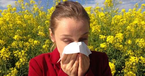 Mais pourquoi avons-nous des allergies ?
