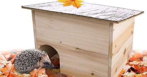 8 objets géniaux pour que les animaux sauvages se plaisent dans votre jardin