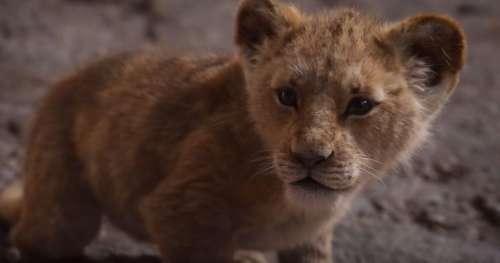 Elton John est très déçu par le remake du Roi Lion