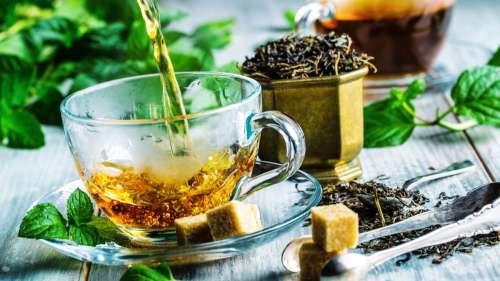 Les personnes qui consomment régulièrement du thé vert vivraient plus longtemps, selon cette étude