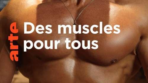 Les muscles sont-ils devenus un modèle social ?