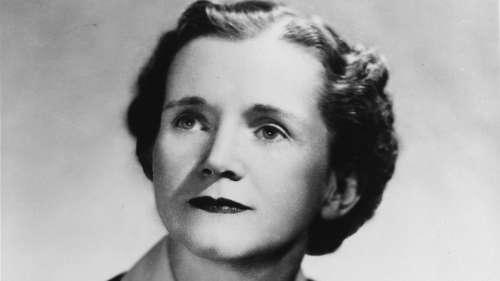 Découvrez l'histoire de Rachel Carson, pionnière de l'écologie