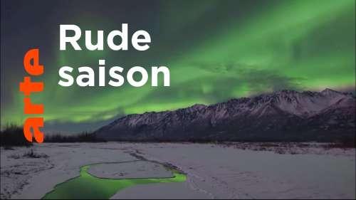 Découvrez la beauté de la nature aux États-Unis en hiver à travers ce documentaire époustouflant