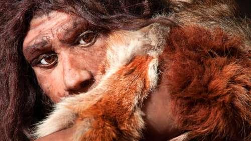 Découverte d'un site préhistorique de Néandertal aux portes de Paris