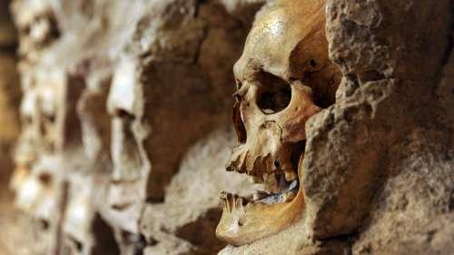 Découverte d'une nouvelle section d'une « tour de crânes » aztèque à Mexico