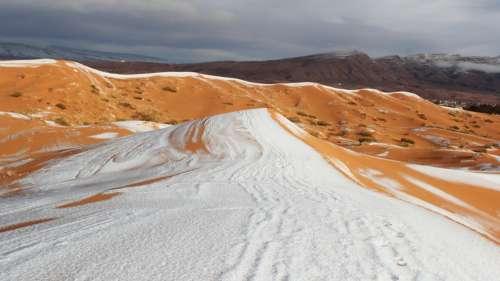 La neige recouvre le désert du Sahara pour la quatrième fois seulement en 50 ans